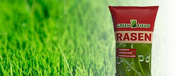 Rasen