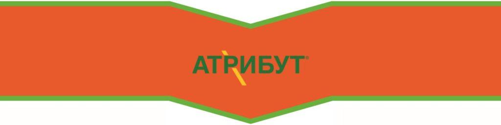 АТРИБУТ, ВГ