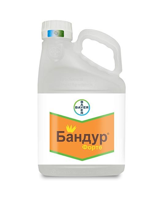 БАНДУР ФОРТЕ, КС