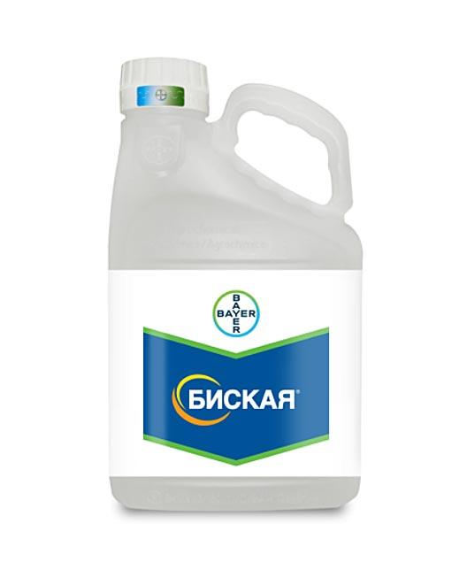 БИСКАЯ, МД