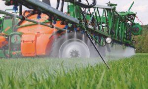 Опрыскивание всходов средствами защиты растений