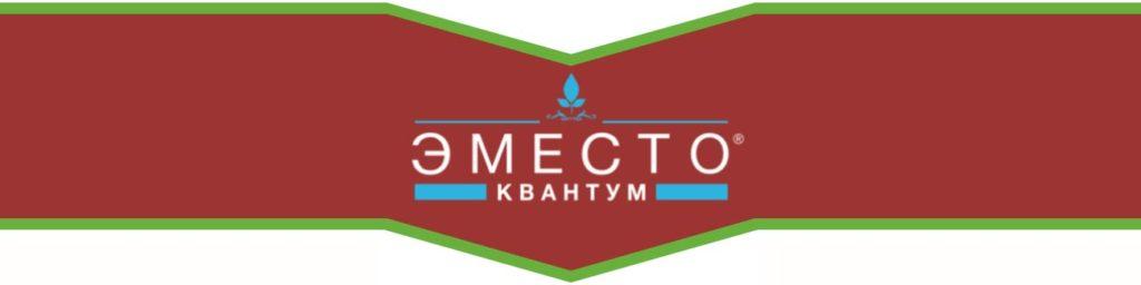 ЭМЕСТО КВАНТУМ, КС