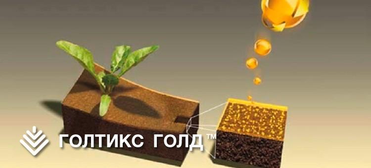 ГОЛТИКС ГОЛД, КС