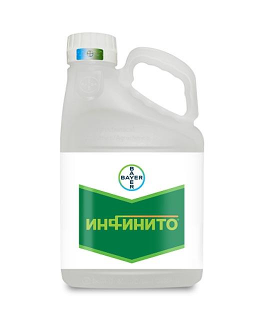 ИНФИНИТО, КС
