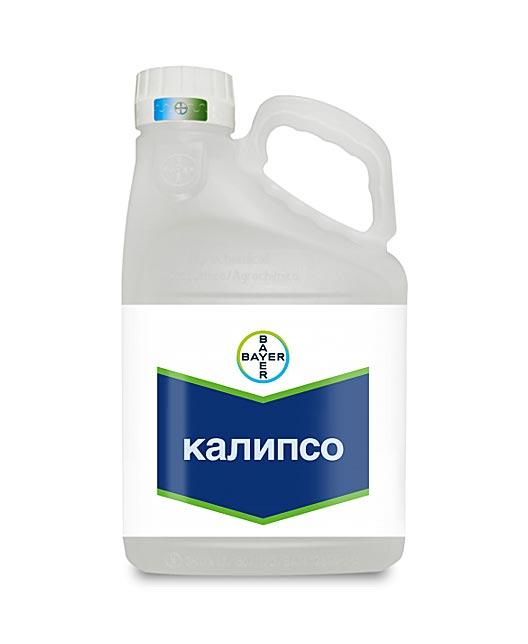 КАЛИПСО, КС