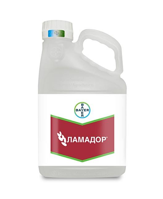 ЛАМАДОР, КС