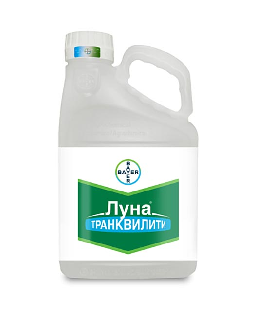 ЛУНА ТРАНКВИЛИТИ, КС
