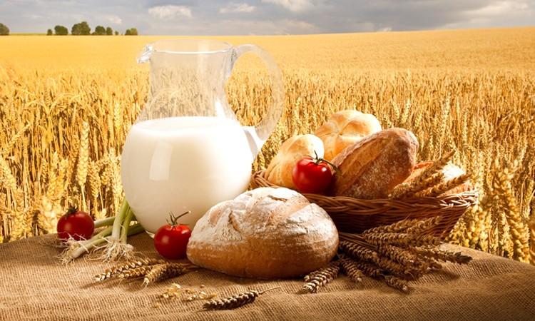 производство сельхозпродукции в Беларуси выросло в 2019