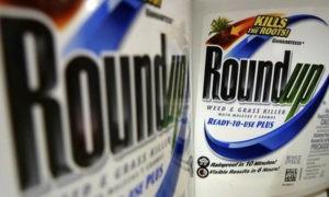 Суд обязал Monsanto выплатить 289 миллионов долларов больному раком
