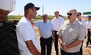 Президент порекомендовал аграриям использовать белорусские семена