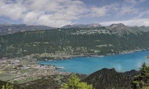 Швейцария запрещает хлороталонил