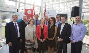 Университет Торонто разработает устойчивые к болезням овощи