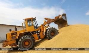 Леонид Заяц об урожае зерновых в Беларуси