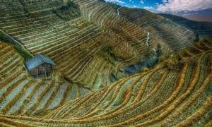 В Китае вступает в силу самый строгий в истории страны эко-закон