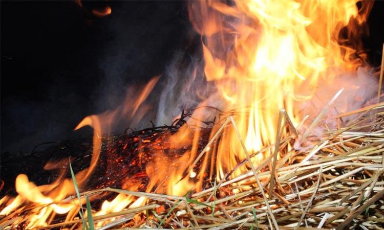 В Могилевском районе сгорело более 30 тонн соломы